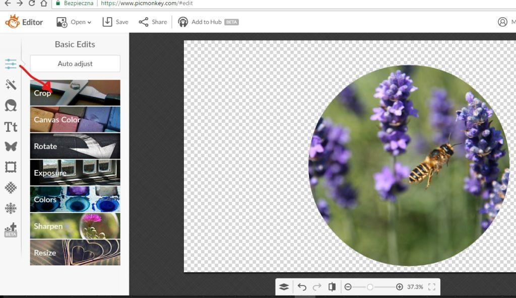 jak zrobić okrągłe zdjęcie